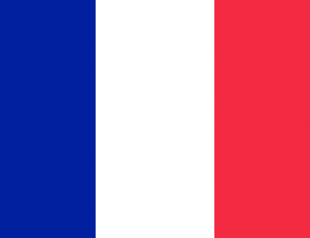 EVS en la La Casa de Europa en Francia, Inicio Septiembre, 11 meses